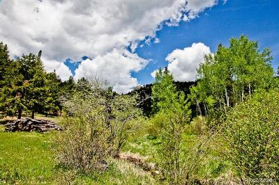 Residential Lots & Land Active: Spirit Horse Trail