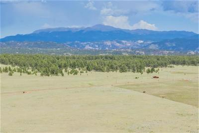 Guffey CO Residential Lots & Land Active: $79,900
