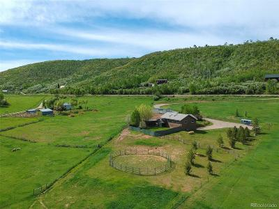 Routt County Single Family Home Active: 37816 County Road 179