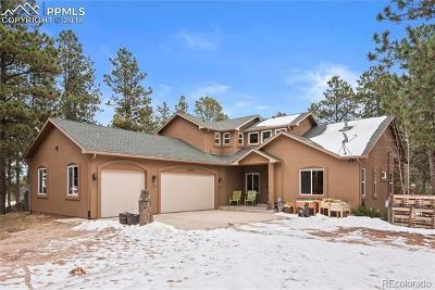 Colorado Springs Single Family Home Active: 16950 Southwood Drive