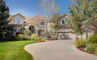 Single Family Home Active: 5301 South Birch Court
