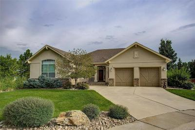 Broomfield Single Family Home Under Contract: 4821 Mountain Gold Run