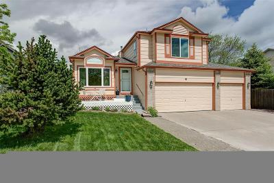 Castle Rock Single Family Home Active: 81 Chatfield Avenue