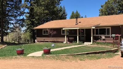 Woodland Park Single Family Home Active: 989 Markus Road