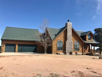 Peyton Single Family Home Active: 17585 Spur Ranch Road