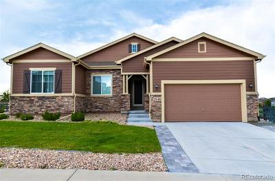 Castle Rock Single Family Home Active: 3146 Russet Sky Trail