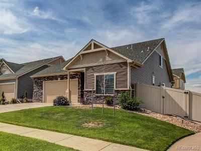 Denver CO Single Family Home Active: $399,000