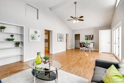 Denver Single Family Home Active: 4120 Benton Street