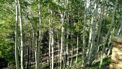 Evergreen Residential Lots & Land Active: 62 Ponderosa Drive