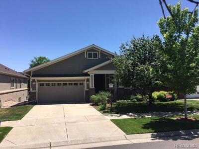 Heritage Eagle Bend Single Family Home Active: 8144 South Catawba Court