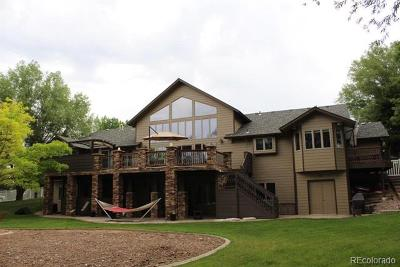 Loveland Single Family Home Active: 3315 Golden Eagle Drive