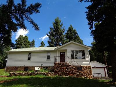 Evergreen Single Family Home Under Contract: 8430 South Blue Creek Road