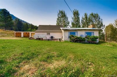 Conifer, Evergreen Single Family Home Active: 32183 Snowshoe Road