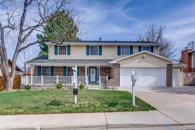 Denver Single Family Home Active: 3802 South Rosemary Way