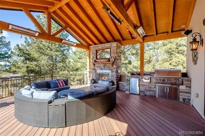 Castle Rock Single Family Home Active: 2463 Saddleback Court