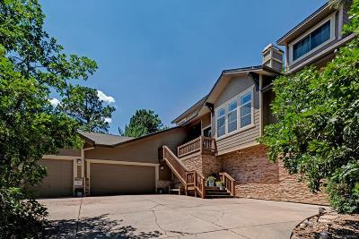Castle Pines Single Family Home Active: 1115 Forest Trails Drive