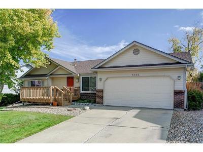 Centennial Single Family Home Active: 5134 South Flanders Lane