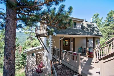 Conifer Single Family Home Sold: 10062 Buena Vista Drive