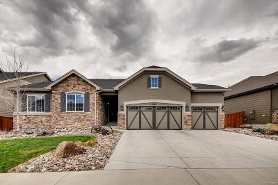 Castle Rock Single Family Home Active: 6367 Blue Water Circle