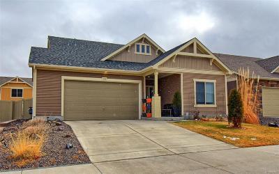 Denver Single Family Home Active: 4716 Walden Court