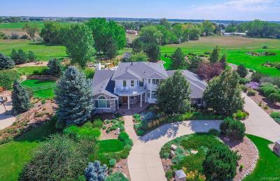 Longmont Single Family Home Active: 8900 Prairie Knoll Drive