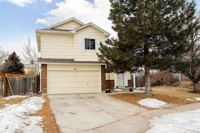 Castle Rock Single Family Home Under Contract: 55 North Holcomb Street
