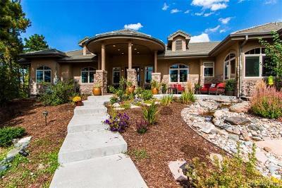 Castle Rock Single Family Home Active: 4604 Tierra Alta Drive