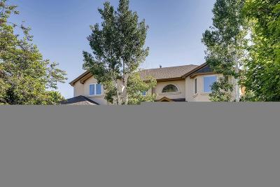 Erie Single Family Home Active: 1383 Northridge Drive