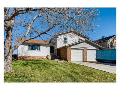 Castle Rock Single Family Home Active: 1012 Park View Court