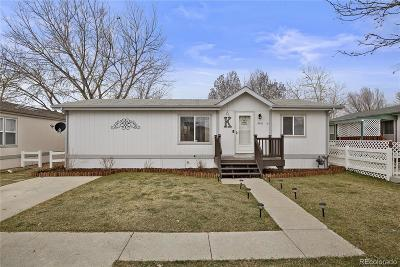 Longmont Single Family Home Active: 11461 Glacier Point #66
