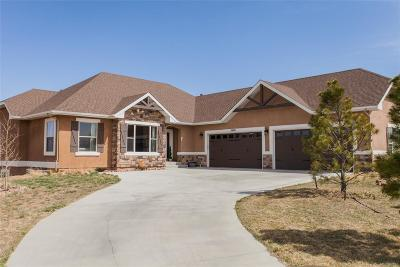 Monument Single Family Home Active: 20431 Hunting Downs Way