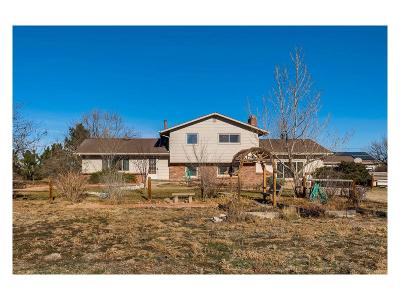 Commerce City Single Family Home Under Contract: 21255 East 118th Avenue