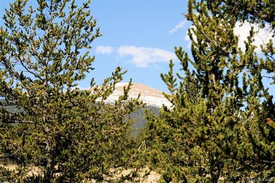 Fairplay CO Residential Lots & Land Active: $29,900