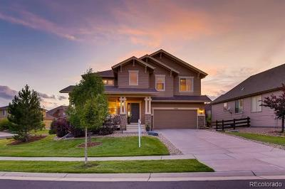 Parker Single Family Home Active: 12201 Windy Trail Lane