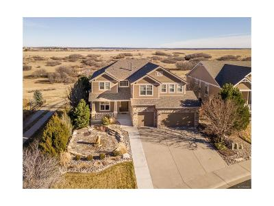 Castle Rock Single Family Home Under Contract: 6734 Fire Opal Lane