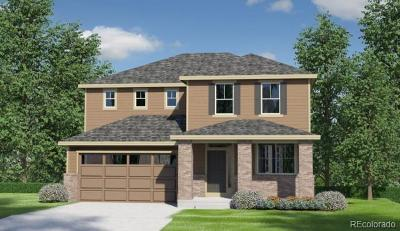 Castle Rock Single Family Home Active: 1301 Sidewinder Circle