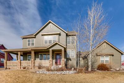 Castle Rock Single Family Home Active: 5561 Killen Avenue