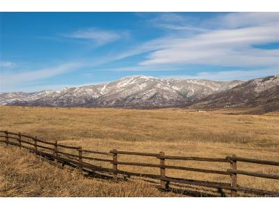 Steamboat Springs Residential Lots & Land Active: 30305 Marshall Ridge