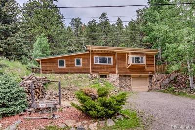Evergreen Single Family Home Active: 6847 South Brook Forest Road