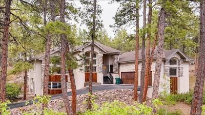 Colorado Springs Single Family Home Active: 1080 Longspur Lane