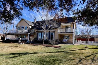 Denver CO Single Family Home Active: $1,500,000