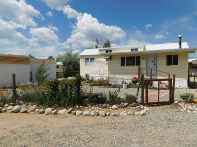 Nathrop Single Family Home Active: 10795 County Road 197a #131