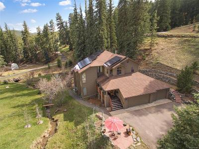 Evergreen Single Family Home Active: 637 Witter Gulch Road