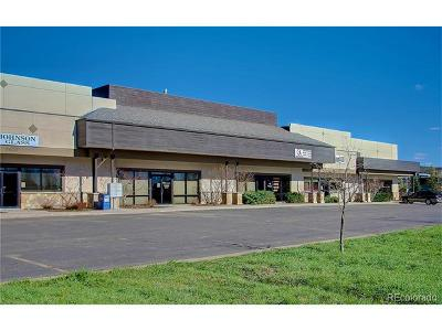 Steamboat Springs Commercial Active: 2620 South Copper Frontage #6 Road