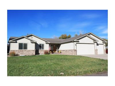 Littleton Single Family Home Under Contract: 8579 South Allison Street