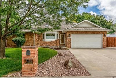 Longmont Single Family Home Active: 1855 Sunlight Drive