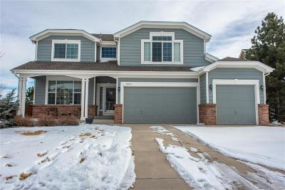Castle Rock Single Family Home Active: 1983 Dolomite Way