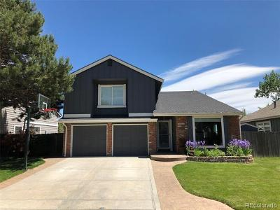 Littleton Single Family Home Active: 8200 South San Juan Range Road
