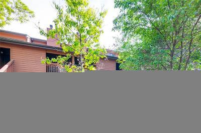 Denver Condo/Townhouse Active: 540 South Forest Street #8-202