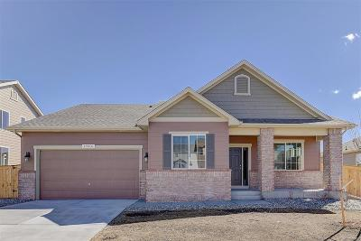 Castle Rock Single Family Home Active: 1393 Sidewinder Circle